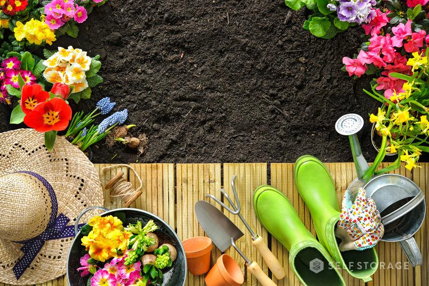 Conheça as ferramentas mais importantes para cuidar do jardim
